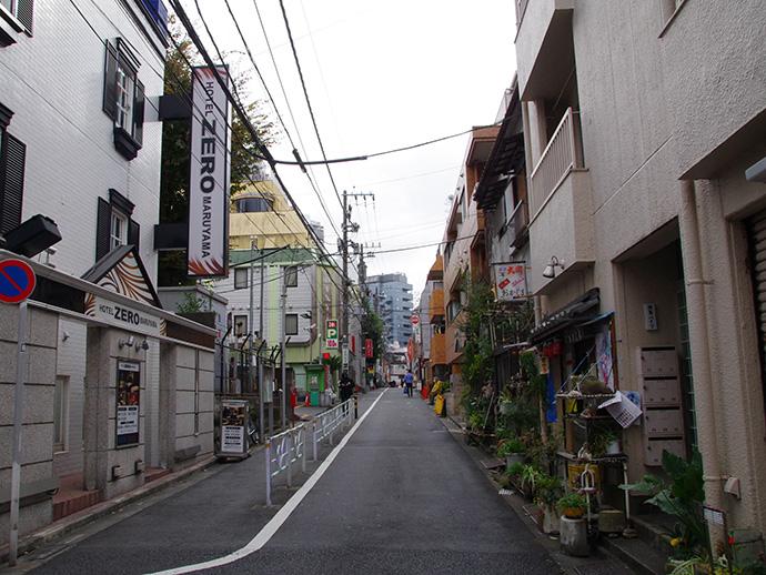 maruyama690